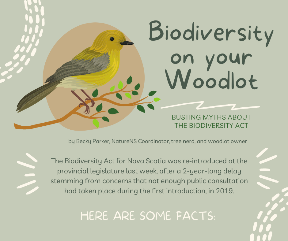 Biodiversity In The Woodlot: An Example from NatureNS staffer Becky Parker